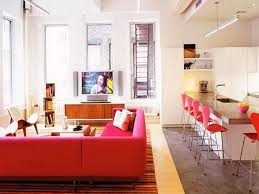 Ideas For Apartment Decor 19 Decoration Of Apartment Decorating Ideas Impressive