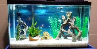 best fan for aquarium best gallon fish tank aquarium 5 10 100 20 200 30 40 55