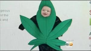 Hazmat Halloween Costume California Company U0027s Marijuana Costume Kids Creates