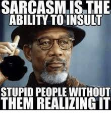 Funny Insulting Memes - sarcasmis the ability to insult stupid people without them