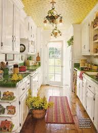narrow kitchen design vlaw us