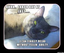 Labor Day Meme - labor day cat meme on imgur