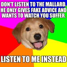 Advice Mallard Meme Generator - image 450691 actual advice mallard know your meme