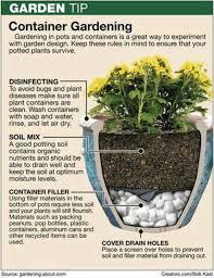 101 best vegetable gardening diy images on pinterest gardening
