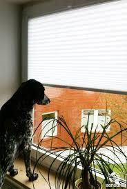 Blinds Up 32 Best Wohnzimmer Living Room Images On Pinterest Blinds