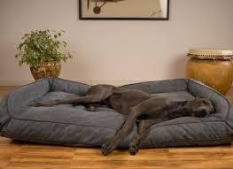 large dog bed ideas korrectkritterscom