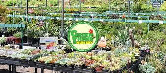Flower Shops In Valencia Ca - santa clarita green thumb nursery green thumb nursery