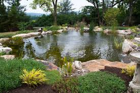 Backyard Pond Landscaping Ideas Garden Design Garden Design With Exotic Backyard Landscape Ideas