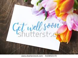 get well soon flowers flowers get well soon stock images royalty free images vectors