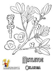 61 best coloring pages images on pinterest coloring books