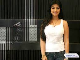 bollywood actress ayesha takia wallpapers 71 best ayesha takia images on pinterest ayesha takia