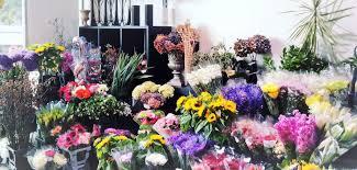 Order Flowers Online Auckland Flowers Flower Delivery Auckland Order Flowers Online