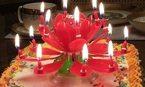 amazing birthday candle amazing blooming lotus flower rotating birthday candle groupon