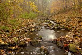 color northeast iowa stream