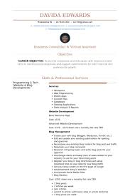 Sample Objective On Resume by Virtual Assistant Resume Samples Visualcv Resume Samples Database