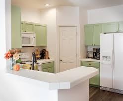 kitchens colors ideas uncategorized paint color ideas for kitchen with impressive
