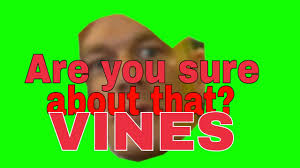 Are You Sure About That Meme - john cena are you sure about that vines compilation youtube