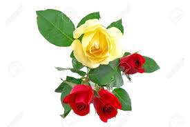 three red roses and one yellow rose in glass pot isolated on