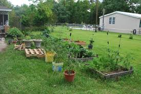 hightail farms front yard vegetable gardening