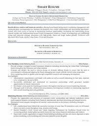 board of directors resume sample samples how smart resume services writers work marketing director resume sample