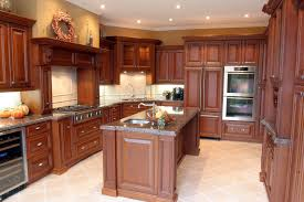 raised panel kitchen cabinets raised panel cabinets kitchen traditional with cabinet front