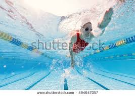 Inside Swimming Pool Woman Swimmer Stock Images Royalty Free Images U0026 Vectors