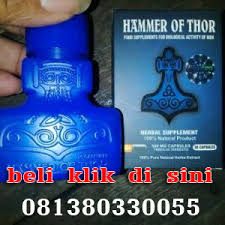 jual obat hammer of thor di bengkulu pusat hammer of thor di