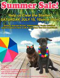 summer sale clear the shelter adoption event women u0027s humane society