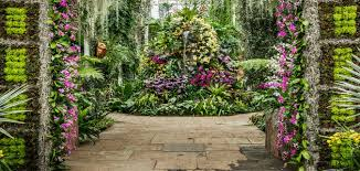 Ny Botanic Gardens New York Botanical Gardens Chihuly 2017 Breathtaking Works Of