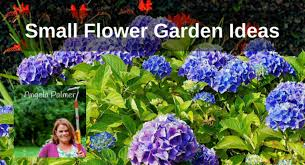 small flower garden ideas with angela palmer back to my garden