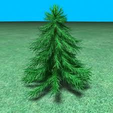 3d small pine tree model 3d model 3d modeling