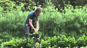 le manoir aux quat u0027saisons the vegetable garden youtube