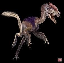dilophosaurus vs guanlong u0026 velociraptor vs troodon dinosaurs forum