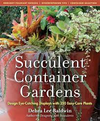 Succulent And Cacti Pictures Gallery Garden Design Succulent Container Gardens Design Eye Catching Displays With 350