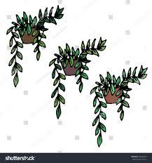 cute vintage doodles indoor plants vector stock vector 528784039