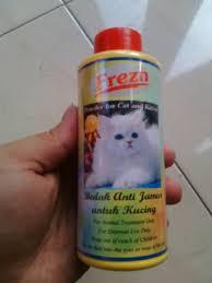 Sho Kucing Anti Jamur 20 cara menghilangkan kutu kucing dengan uh dan mudah kata co id