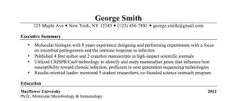 executive summary resume exles executive summary resume sles resume cover letter