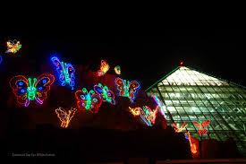 Christmas Lights Colorado Springs Galveston Christmas Lights Christmas Lights Decoration