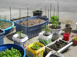 Vegetable Garden Containers by Recycled Container Gardening Google Search Urban Garden Ideas