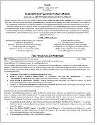 Core Competencies Project Manager Resume Senior Program Manager Resume Template Billybullock Us