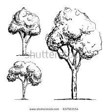 trees sketch vector stock vector 637503154 shutterstock