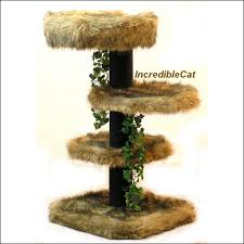 Unique Cat Furniture Senior Cat Tree 3 U0027 High Glenwood Best Cat Bed Designer