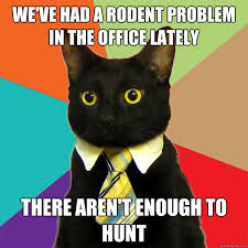 Rodent Meme - we ve had a rodent problem cat meme cat planet cat planet