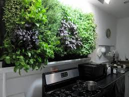 lights to grow herbs indoors massive kitchen wall herb garden growing herbs indoors