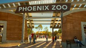 Zoo Lights Phoenix Zoo by Animal Pictures View Images Of Phoenix Zoo
