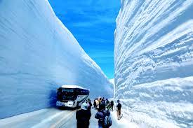 Photos Of Snow 66 Feet Of Snow On The Tateyama Kurobe Alpine Route Official