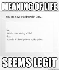 What Is The Meaning Of Meme - meaning of life seems legit meaning of life quickmeme