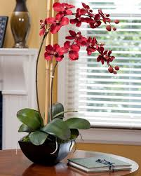 vanda orchids shop silk vanda orchid plant at officescapesdirect