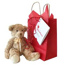 balloons and teddy delivery add on gifts and balloon delivery by balloonplanet