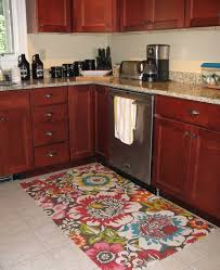 Rug Runners For Kitchen by Fabulous Small Kitchen Rugs Small Rug Kitchen Bathroom Bedroom